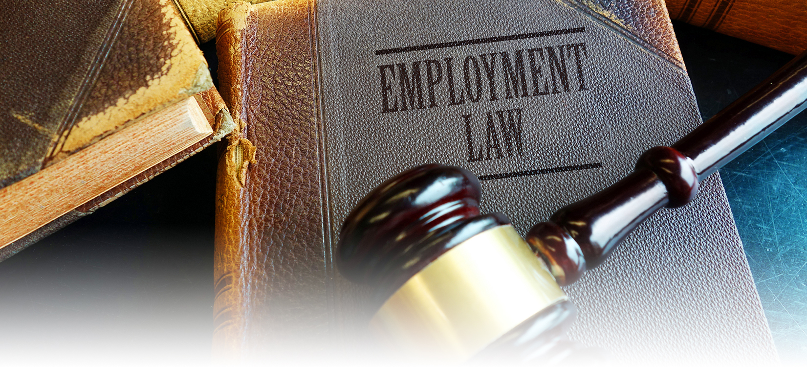 south jersey labor & employment law